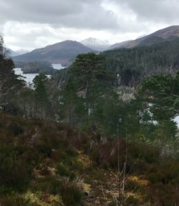 view glen affric